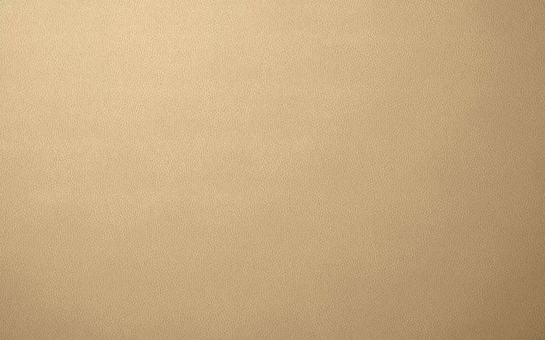 ベージュの革・フリーテクスチャ(PHOTO)