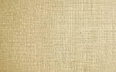 アイボリーのインド綿・フリーテクスチャ(PHOTO)