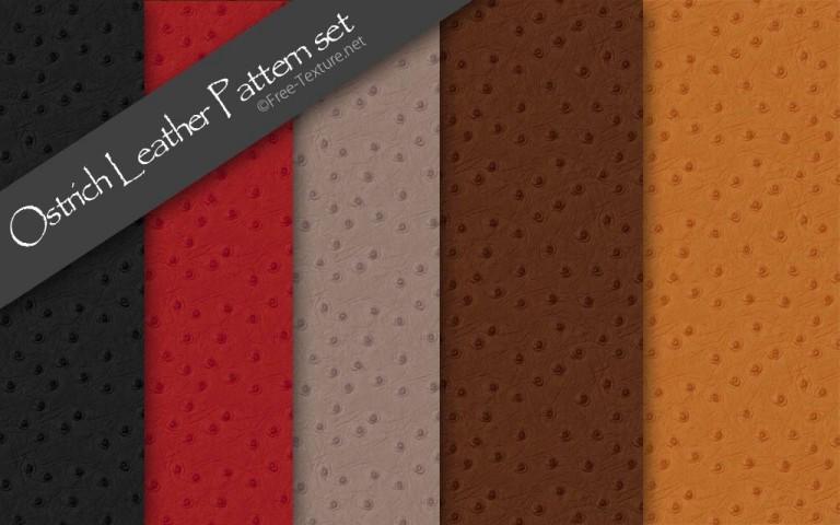 オーストリッチ・本革画像のパターンテクスチャ5色SET(PHOTO)