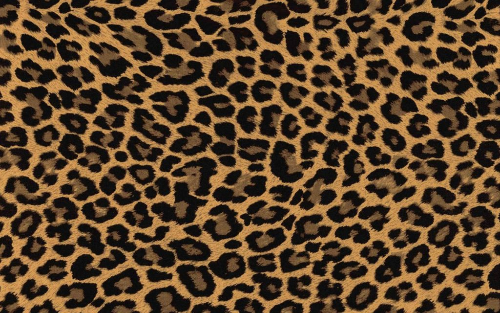 Leopard print wallpapers 2017 2018 best cars reviews for Leopard print wallpaper