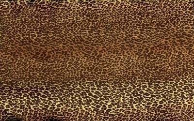 ヒョウ柄・フリーテクスチャ(Leopard03)