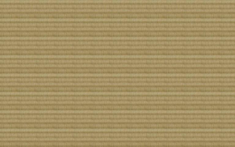 畳のテクスチャ素材02(PHOTO)