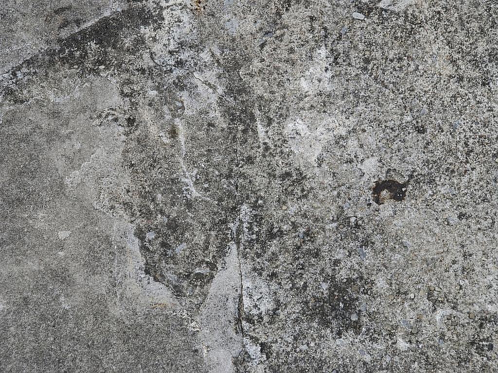 Wood Panel フリーテクスチャ素材館/コンクリート01・フリーテクスチャ(photo)