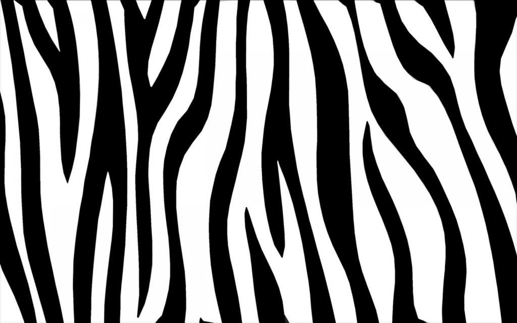 フリーテクスチャ素材館/シマウマ(zebra03)